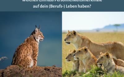 Luchs oder Löwe – Ein Vortrag über Persönlichkeitsmerkmale und Ihre Bedeutung